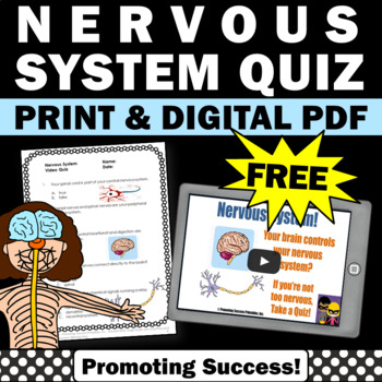 FREE Download Human Body Nervous System Science Center Act