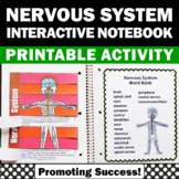 Nervous System Activities for Human Body Systems Project, 5th Grade Science