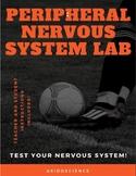 Nervous System Lab I