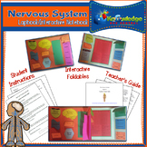Nervous System Lapbook/Interactive Notebook