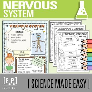 Nervous System Made Easy