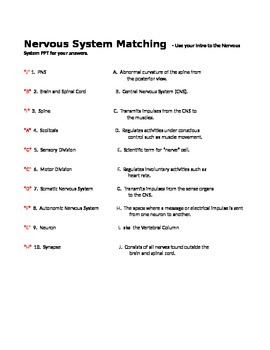 Nervous System Matching with KEY