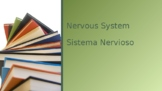 Nervous System Power Point  With Vocabulary in English and