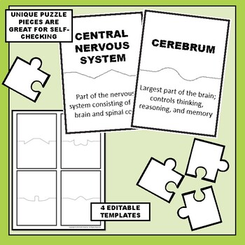 Nervous System Science Vocabulary Puzzles
