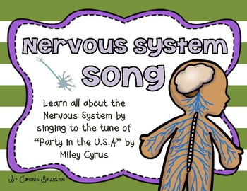 Nervous System Song (Brain and Spinal Cord)