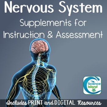 Nervous System Supplements for Instruction and Assessment