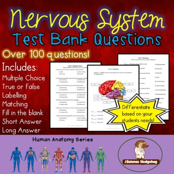 Nervous System Test Questions by The Science Hedgehog | TpT
