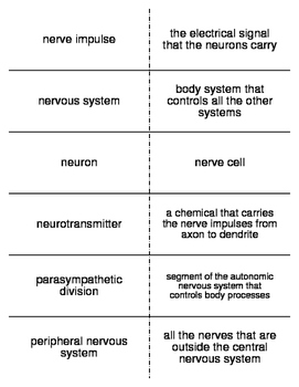 Controlling the Body Vocabulary Flash Cards for Middle School Science