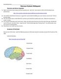 Nervous System Webquest