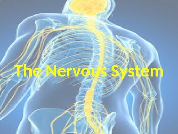 Nervous System and Psychology PowerPoint