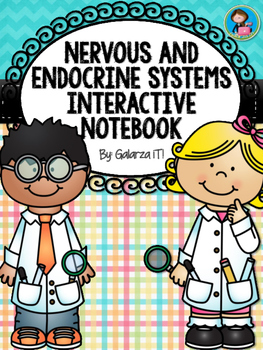 Nervous and  Endocrine Systems Interactive Notebook