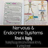 Nervous and Endocrine Systems Read and Apply Notebook Activity {NGSS MS-LS1-3}
