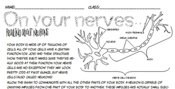NO PREP Nervous system neuron close reading coloring pg Jr high ELA Science IAN