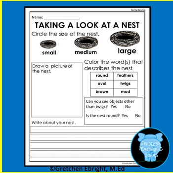 Nest Observation Sheet for Spring: A Science Center Activity