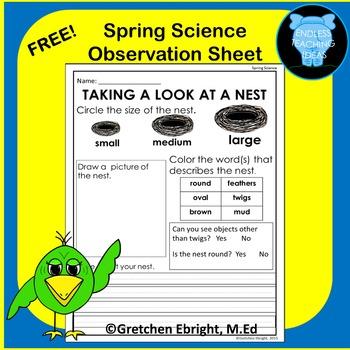 Nest Observation Sheet for Spring: A Science Center Activity