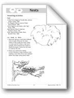 Nests (Make Books with Children)