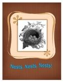 Nests, Nests, Nests!