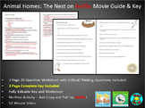 Netflix Animal Homes: The Nest (Focus on Birds) *Fully Editable & Key Included*
