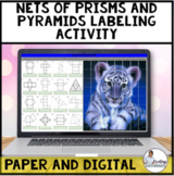 Nets of Prisms and Pyramids Digital and Print Activity