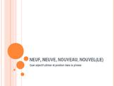 Neuf, neuve, nouveau, nouvel(le) (new) - modifiable PowerPoint