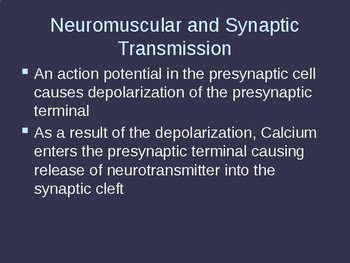 Neuromuscular and Synaptic Transmission Explained (Handout & Presentation)