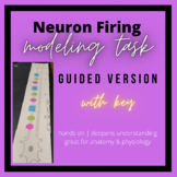 Guided Neuron Firing Modeling: Hands-On Activity