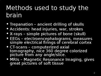 Neuroscience & Behavior Power Point