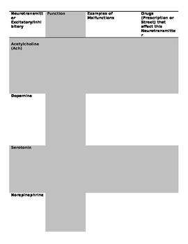 Neurotransmitters Formative Assessment (Superhero)