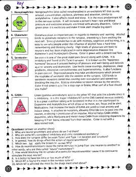 Neurotransmitters and Their Actions