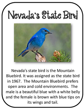 Nevada State History Unit.  U.S. State History.  34 Pages!!