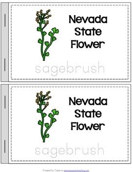 Nevada State Symbols Notebook