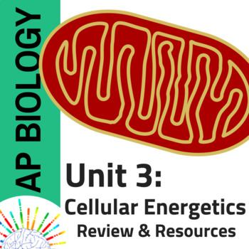 AP Biology Comprehensive Review plus Resources for Unit 3: Cell Energetics