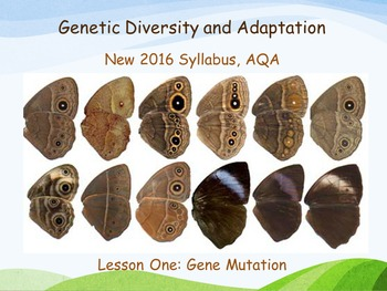 New AQA (2016) Year 1 Biology (AS) - Gene Mutation - Flipped Learning