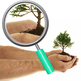 New Growth Concept - Baby Trees in Hands Photo Clip Art for Commercial Use