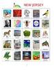 New Jersey Bingo:  State Symbols and Popular Sites
