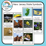 New Jersey State Symbols Cards