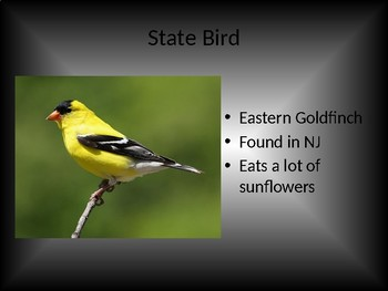 New Jersey Symbols PowerPoint