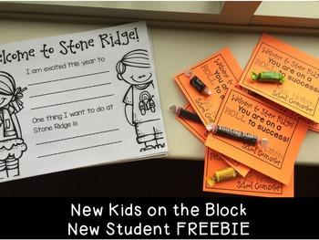 New Kids on the Block - editable New Student group FREEBIE