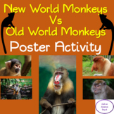 New World Monkeys vs. Old World Monkeys Comparison Activity