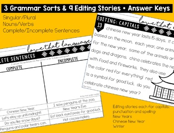 New Years and Winter Language & Grammar Worksheets