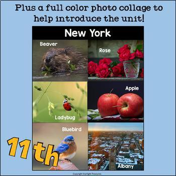 New York Mini Book for Early Readers - A State Study