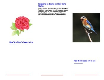 New York State Brochure Part 2-Template