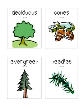 New York State Common Core Kindergarten ELA Domain 4 Vocabulary Cards