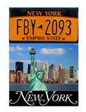 NEW YORK FACTS UNIT (GRADES 3 - 5)