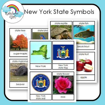 New York State Symbols Cards