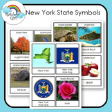 New York State Symbols Cards