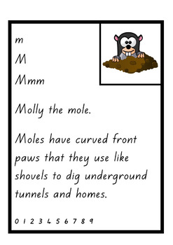 New Zealand Handwriting Copy Cards – Animals