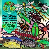 New Zealand Native Bugs Clip Art {Insects, Spiders & Inver