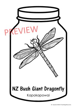 New Zealand Native Bugs - writing and craft activity