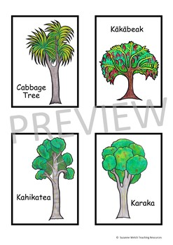 New Zealand Trees Matching Cards